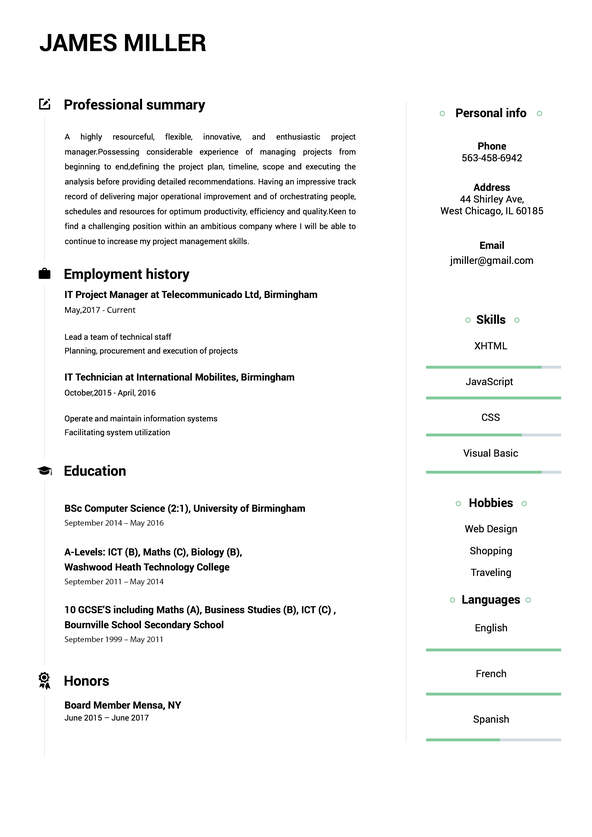 Create A Perfect Resume In 5 Minutes Online Resume Builder